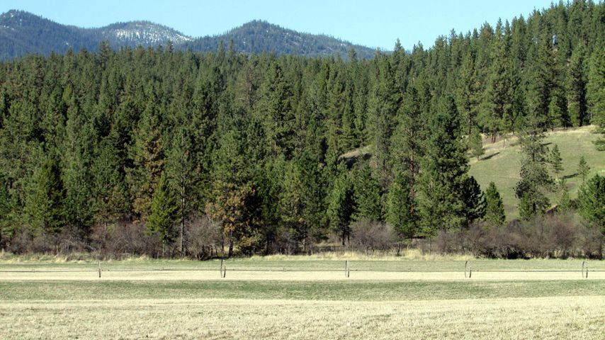 Nhn Frenchtown Frontage Road, Huson, MT 59846