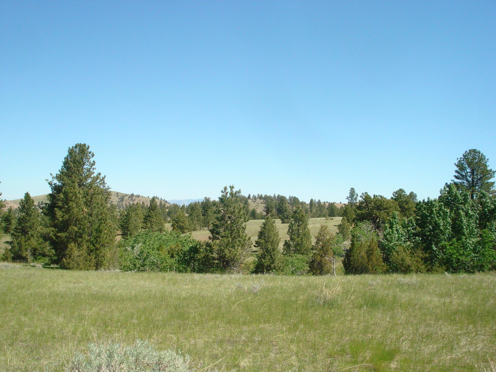 Tbd West Sawmill Road, Montana City, MT 59634