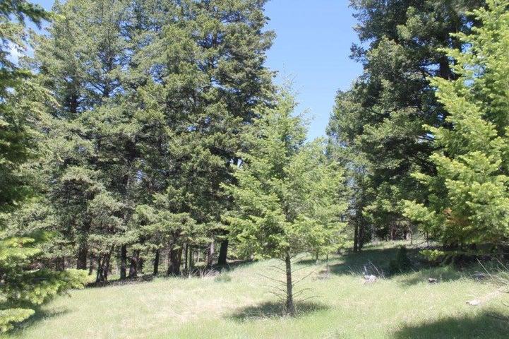 92 Spring Mountain Drive, Kalispell, MT 59901
