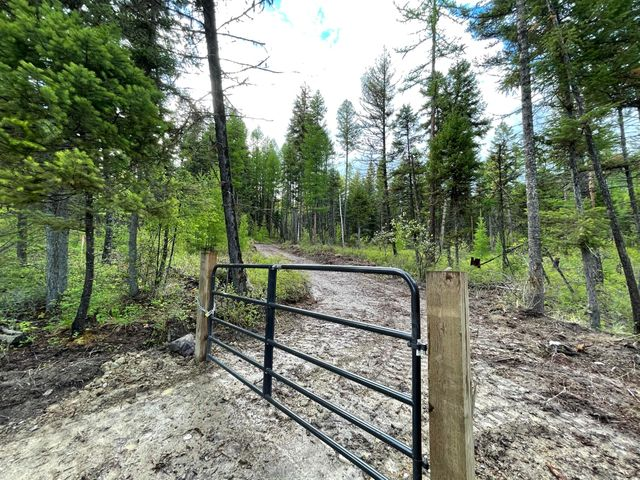 Nhn Idaho Hill Road, 125 Acres, Marion, MT 59925