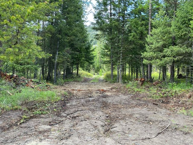 61 Acres On Idaho Hill Road, Marion, MT 59925