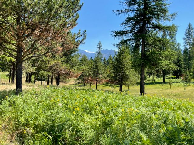 Nhn Evergreen Acres, Trout Creek, MT 59874