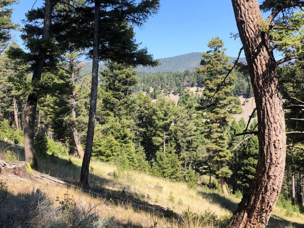 Copper Camp Creek Road, Melrose, MT 59743