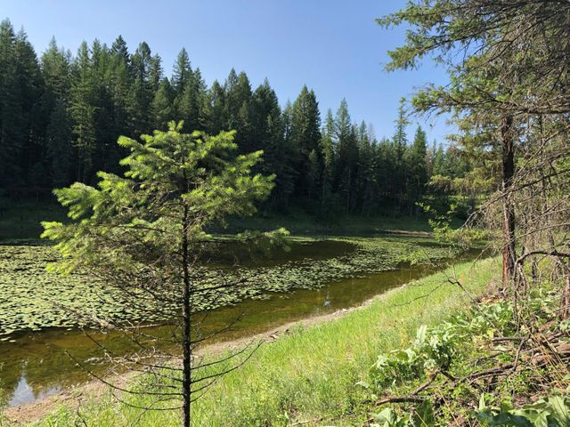 328 Kathy Lake Lane, Kalispell, MT 59901