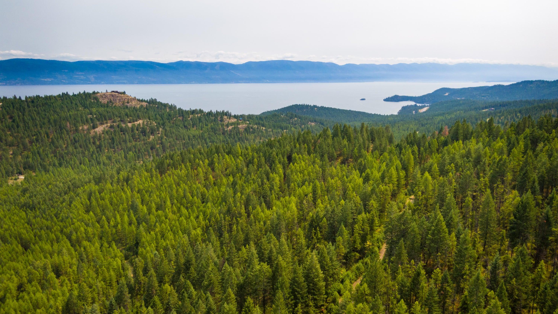2661 Blue Mountain Way, Lakeside, MT 59922