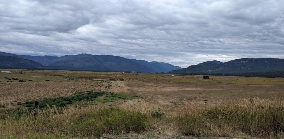 Nhn Walking Horse, Plains, MT 59859