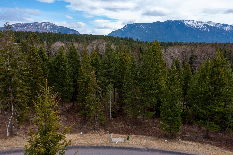253 Gleneagles Trail, Columbia Falls, MT 59912