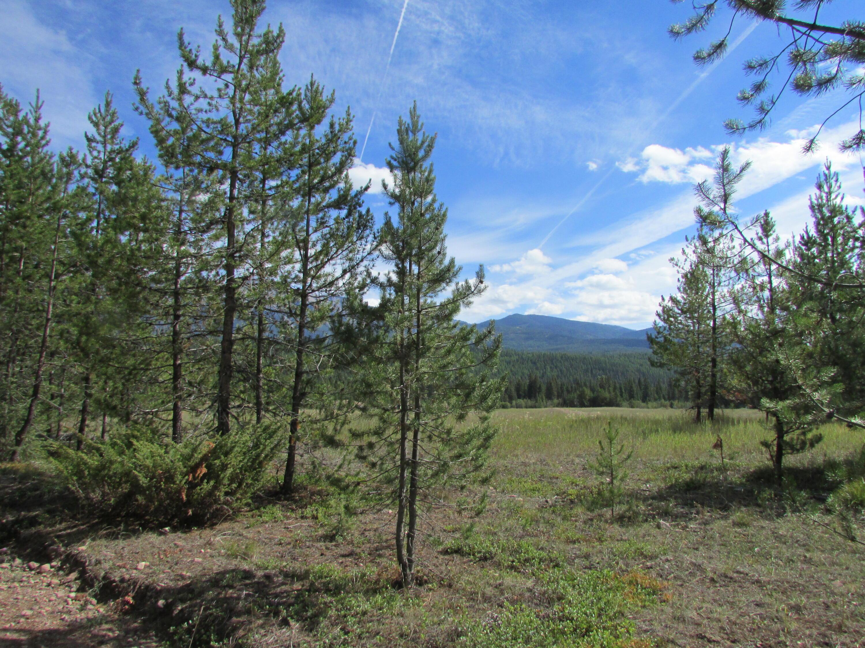 Nhn Summit Park Road, Seeley Lake, MT 59868