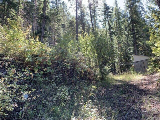 Nhn Hope Valley  Lot 8 & 9 Road, Trout Creek, MT 59874