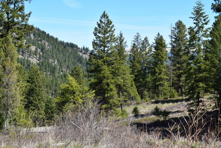 Lot 11 of Cyhawk Estates is a beautiful lot with power close to the property line and has a Forest service border. Lot 11 is located only 4 miles from Eureka and Lake Koocanusa. 8.1 acres with views of the mountains. Septic approval. Purchaser to install well. The property is parked out and ready for your new home!
