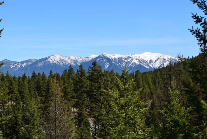Lot 8 of Cyhawk Estates located only 4 miles from Eureka and Lake Koocanusa.  11.4 acres with views of the mountains. POWER IS CLOSE BY ! Septic has approval and is ready to install. Purchaser to install well. The property is parked out and located in a beautiful neighborhood, ready for your new home!
