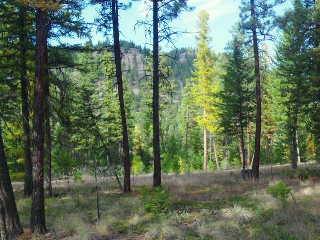 Lot 5 of Cyhawk Estates borders Forest Service land and is only 4 miles from Eureka and Lake Koocanusa in an 11 lot subdivision. 7.5 acres with views of the mountains. Power is to the property. Septic approval. Purchaser to install well. The property is parked out and ready for your home!