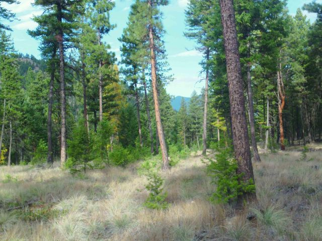 Lot 4 of Cyhawk Estates located close to Eureka and Lake Koocanusa ! 8 acres with views of the mountains. Septic approval. Power to the property! Septic and well are approved . The property is parked out and ready for your home!