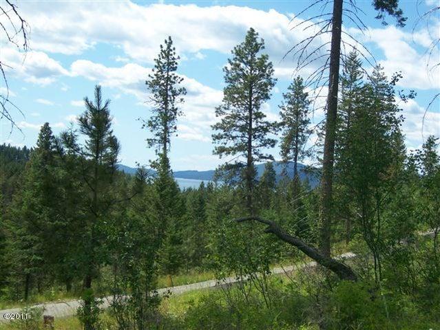 Nhn Wild Horse Ranch Lane S Lot 3, Rollins, MT 59931