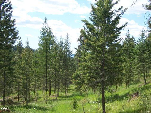 Nhn Wild Horse Ranch Lane Lot 4, Rollins, MT 59931