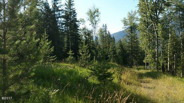 16 Pilgrim Creek Road, Noxon, MT 59853