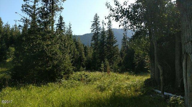 19 Country Road, Noxon, MT 59853