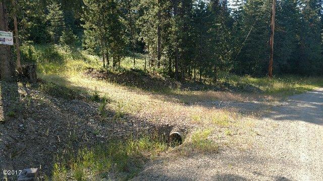 6 Pilgrim Creek Road, Noxon, MT 59853