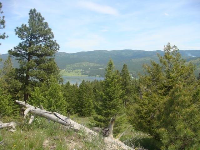 Lone Elk Trail Mount Jackson, Kila, MT 59920