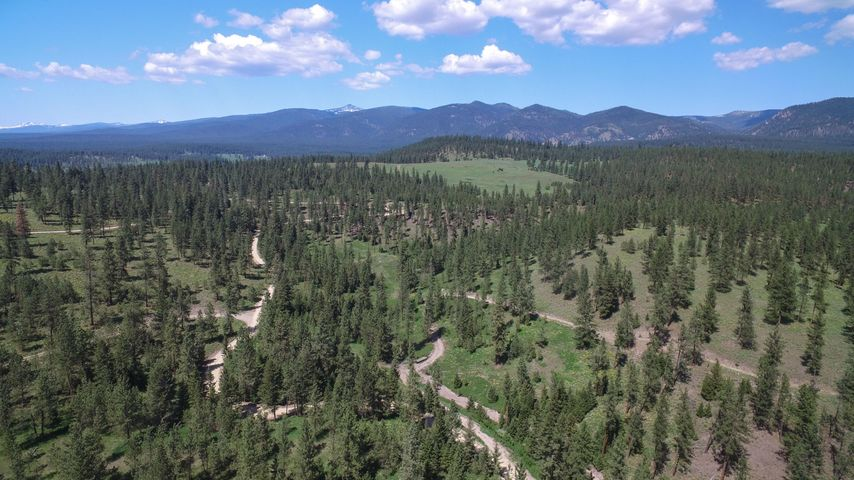 17669 Calamity Lane (Lot 10), Huson, MT 59846