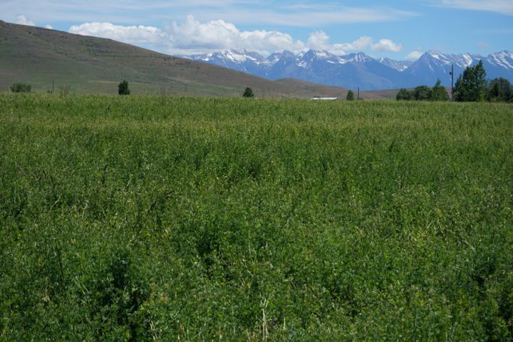 Nhn West Road, Moiese, MT 59824