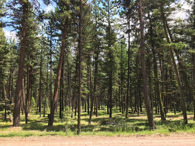 Nhn Bear Creek Road, Bonner, MT 59823