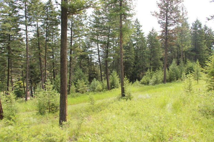 378 Skookum Road, Lakeside, MT 59922
