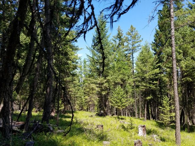 Enjoy NW Montana on this wooded 7 acre parcel of property!Now available with seller financing !!A nice location to Lake Koocanusa and a short distance to lots of National Forest Land make this an attractive spot to build that new home or to park the rv. Power is close-by and there is lots of timber on the property and with a little thinning the mountain views will open up as well !