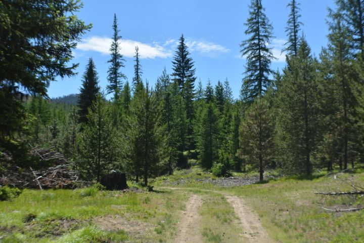 Nhn Mcginnis Meadow Road, Libby, MT 59923