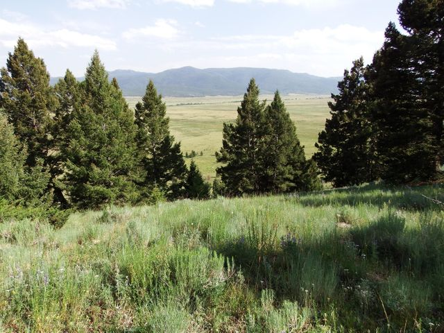 Tbd Lowland Road Tract A, Butte, MT 59701