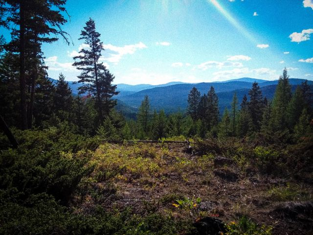Nhn Jim Creek Road, Trego, MT 59934