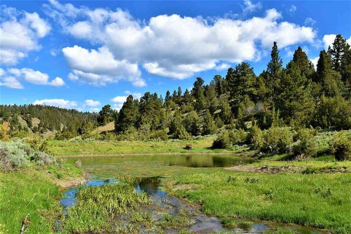 255+- Acre Parcel 1 Recreational Paradise, White Sulphur Springs, MT 59645
