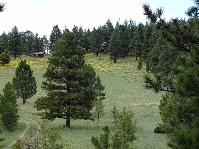 TBD French Creek Rd, Wolf Creek, MT 59648