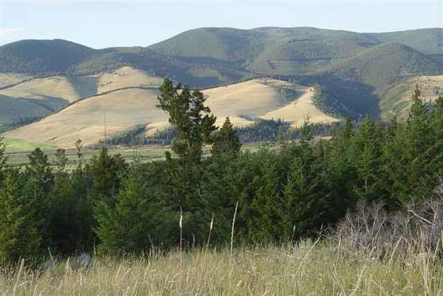 Tbd Mothering Pasture Helmville, Helmville, MT 59843