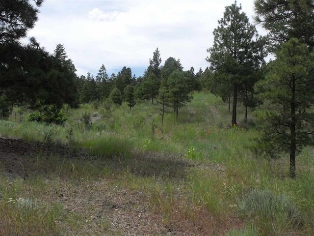 L23 Woodland Hills EstatesII, Helena, MT 59602