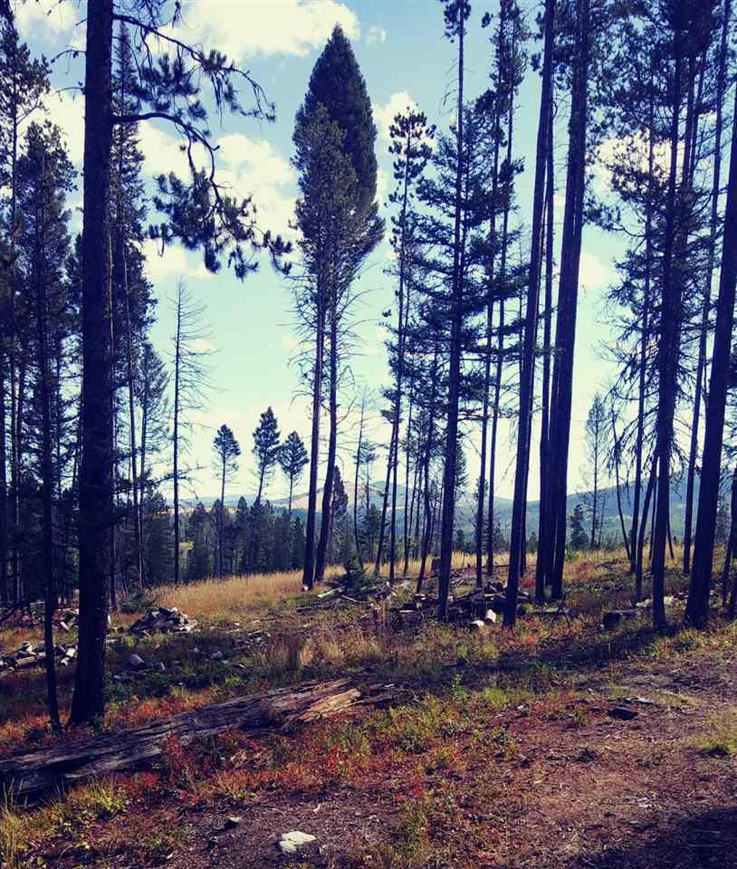 TBD Bear Gulch, Lincoln, MT 59639