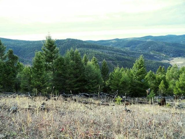 800 Acres Deer Park, Garrison, MT 59731