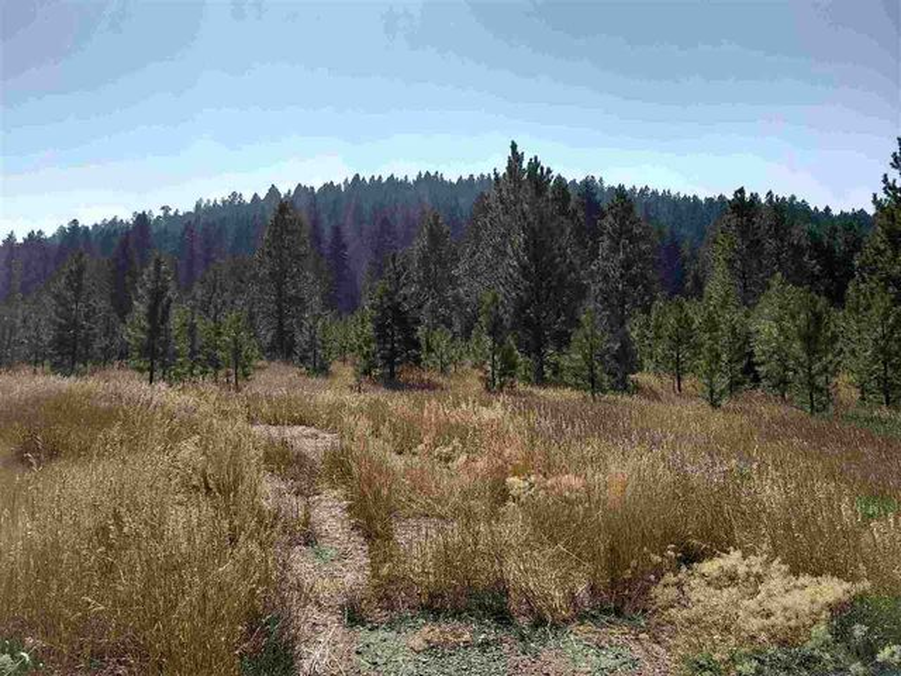 197 S. Hills Road, Montana City, MT 59634