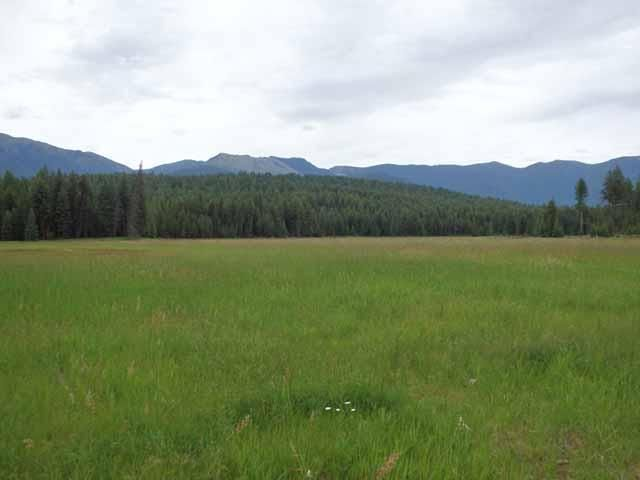Sec. 7 Roberts Creek Road, Fortine, MT 59918