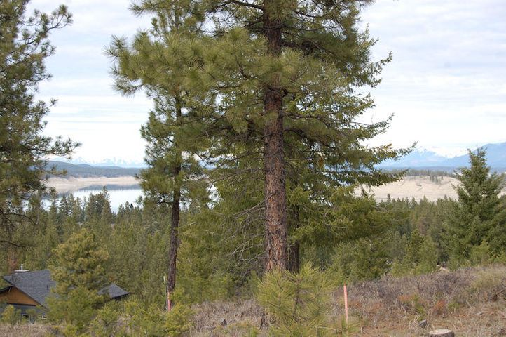 Lot 32 Nelson Drive, Rexford, MT 59930