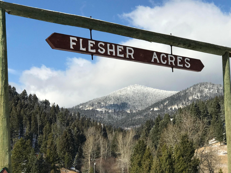 12962 Flesher Acres Road, Canyon Creek, MT 59633