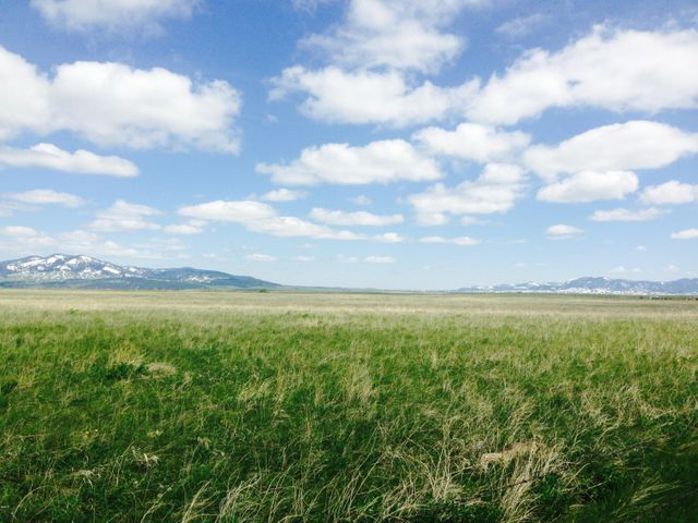 Tbd Jenni Road, Lewistown, MT 59457