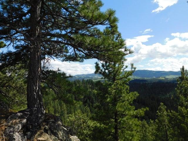 3298 little Bear Rd. Lane, Cascade, MT 59421