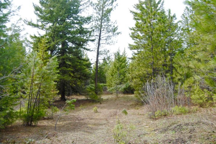 Lot 12 Two Hawks Lane, Potomac, MT 59823