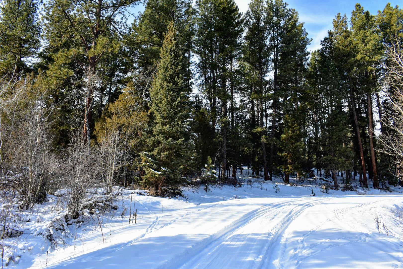 Tract 2b1 Stonewall Creek Road, Lincoln, MT 59639