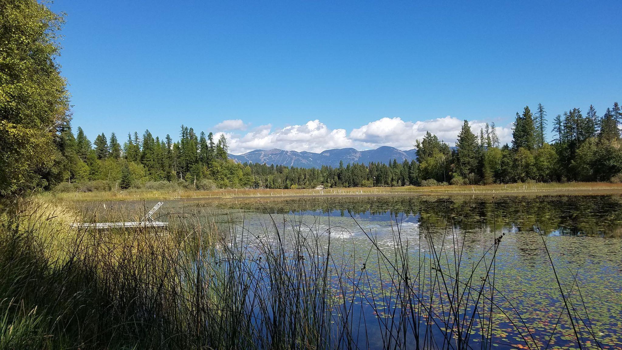620 Leksand Trail, Whitefish, MT 59937