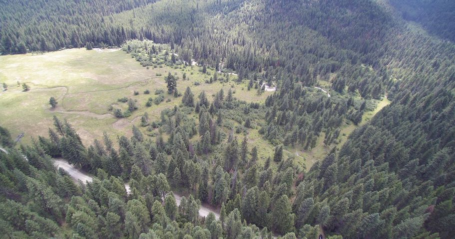 3775 Tamarack Creek Road, Saint Regis, MT 59866