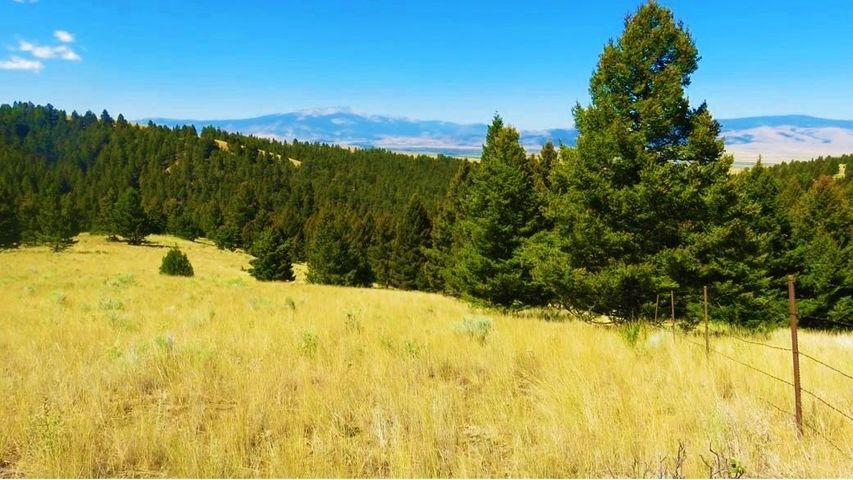 Perkins Creek Ranch, Warm Springs, MT 59756