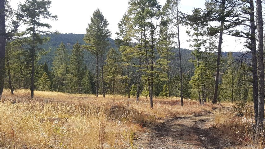 Lot 55 Beaverslide/Access Road, Helmville, MT 59843