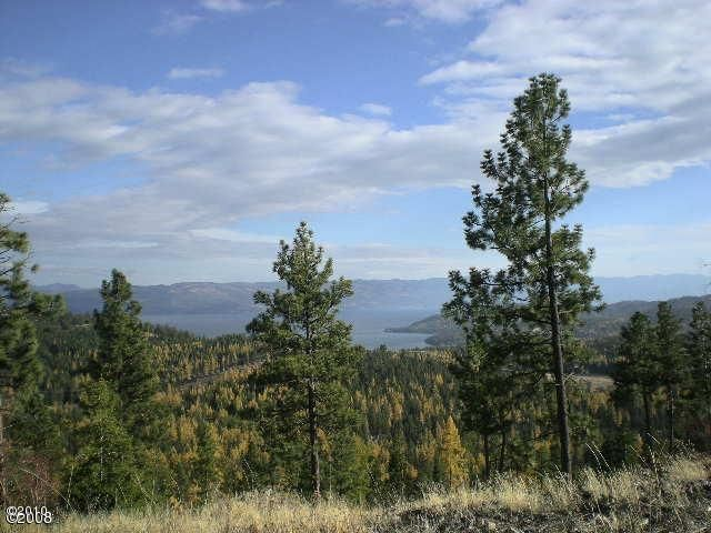 1145 Bierney Creek Road, Lakeside, MT 59922